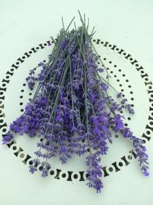 Lavender peak